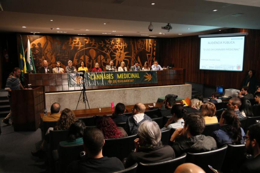 Audiência pública proposta pelo deputado Goura (PDT) reuniu especialistas da Saúde e do Direito que falaram do uso terapêutico da Cannabis.