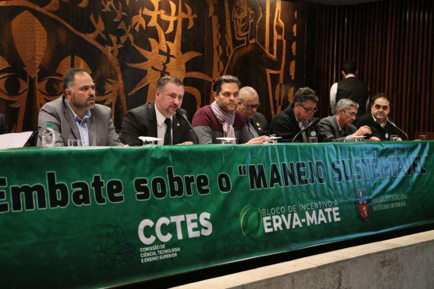 Encontro proposto pelo deputado Emerson Bacil (PSL) expôs posições de produtores rurais, representantes do poder público e ambientalistas sobre o manejo da mata de araucária.