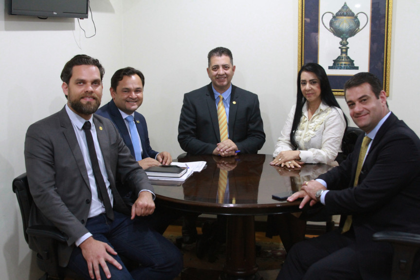 Deputado integrantes da Comissão de Defesa dos Direitos da Criança, do Adolescente, do Idoso e da Pessoa com Deficiência