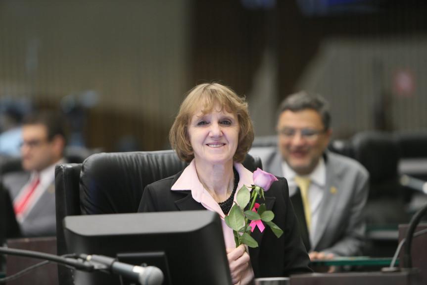 Deputada Luciana Rafagnin (PT), proponente da audiência pública sobre o feminicídio que será realizada dia 12 na Assembleia Legislativa.