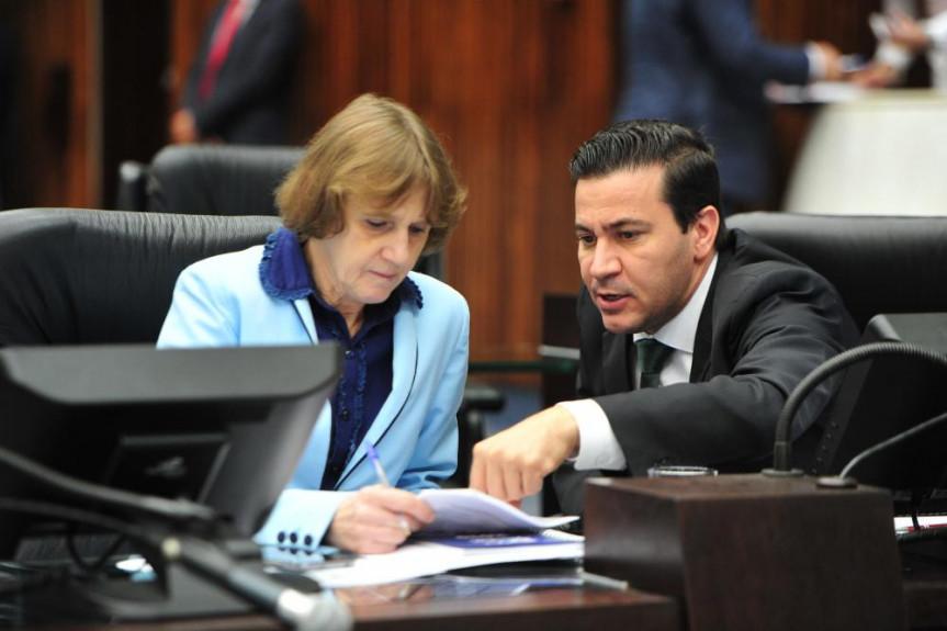 Deputados Luciana Rafagnin e Arilson Chiorato (PT) requerem homenagem à UEM.