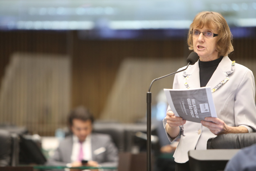 Deputada Luciana Rafagnin (PT).