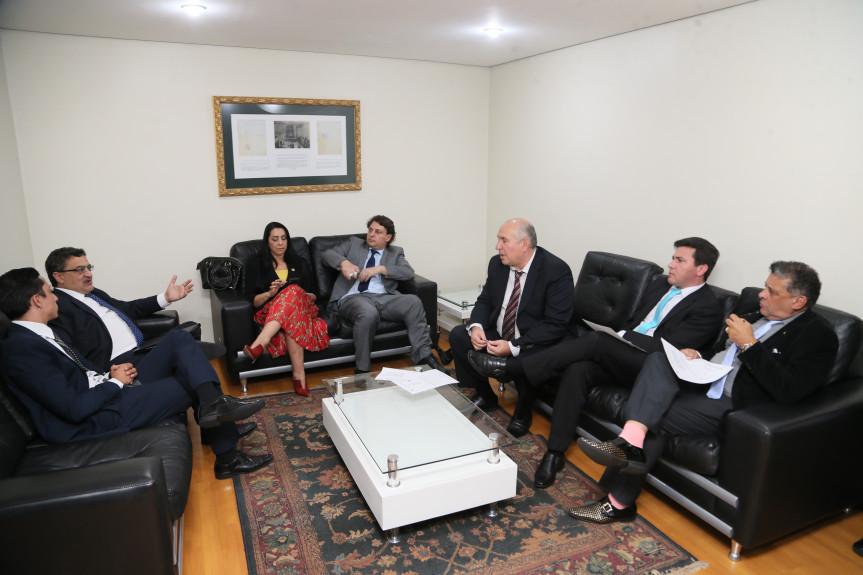 Reunião da Comissão de Relações Federadas e Assuntos Metropolitanos