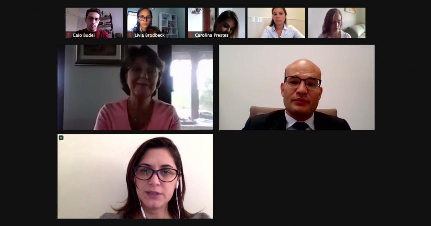 Reunião on-line debateu a criação de mais Procuradorias Municipais da Mulher.