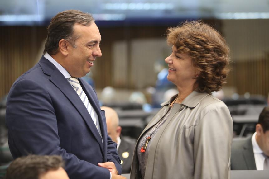 Projetos dos deputados Delegado Francischini e Cristina Silvestri são aprovados em redação final na sessão desta segunda-feira (02).