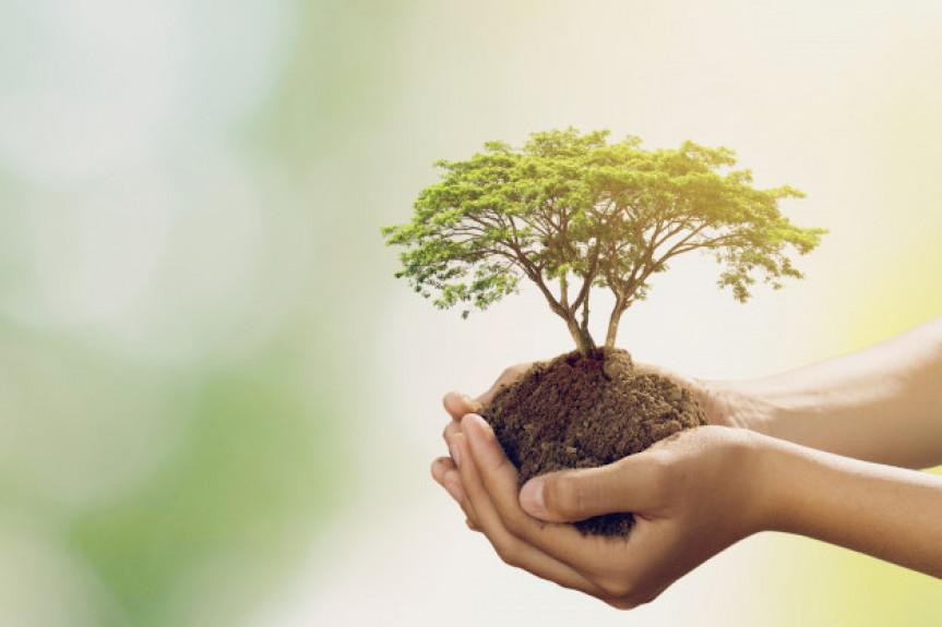 Campanha Junho Verde é dedicada à eventos para conscientização da sociedade sobre a necessidade de cuidados com o meio ambiente.