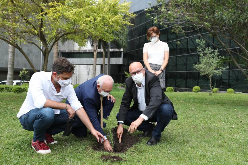 O dia 21 de setembro, Dia da Árvore, é tradicionalmente celebrado pelo Poder Legislativo com ações de incentivo à conscientização pela preservação do meio ambiente.