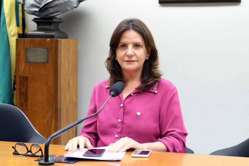 Deputada federal catarinense Carmen Zanotto (CDN)