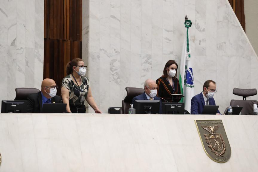 Deputados aprovaram em primeiro turno a criação do Programa Paraná Mais Verde.