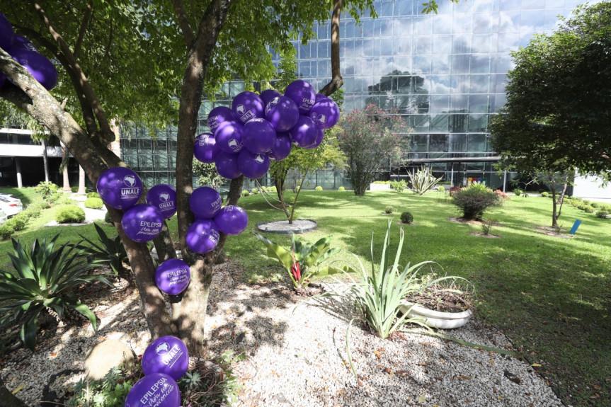 Dia Mundial de Conscientização sobre Epilepsia ou Purple Day é comemorado em 26 de março.