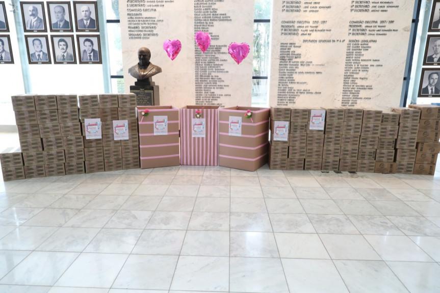 Assembleia arrecada mais de 30 mil absorventes para combater pobreza menstrual.