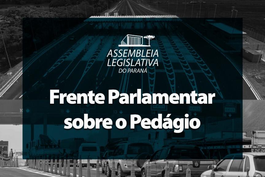 Deputados que integram a Frente Parlamentar do Pedágio se reúnem nesta quinta-feira (04) de forma remota a partir das 14h30.